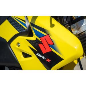Suzuki colors